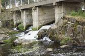 River under a bridge — Stock Photo