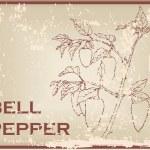 Постер, плакат: Bell pepper