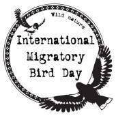 International Migratory Bird Day — Stock Vector