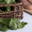 Spinach leaves — Stock Photo #74267753