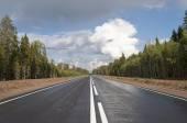 Новая асфальтированная дорога через лес — Стоковое фото