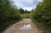 Dirt road with mud and big puddles after rain — Stock fotografie