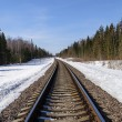 Railway track in spring forest — Stock Photo #68508269