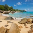 Unspoiled tropical beach in Sri Lanka. — Stock Photo #53980255