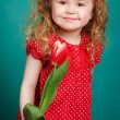 Beautiful little girl with a big bouquet of tulips. — Stock Photo #66876293