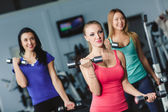 Young sports women perform a set of exercises with dumbbells. — Stock Photo