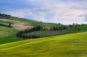 Sunset Tuscany — Stock Photo