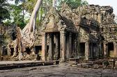 Preah Khan — Stock Photo