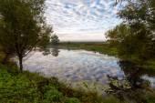 Bogolyubov meadow. Russia — Стоковое фото