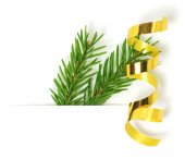 Green fir branch with ribbon — Stock Photo