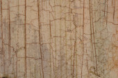 Texture with craquelure — Stock Photo