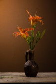 Still life with lily — Stock Photo