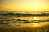 Sunset on the summer beach. — Stockfoto