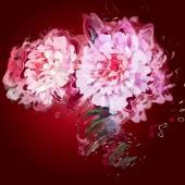 Grunge painting peony flowers. — Stock Vector