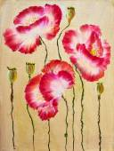 Red poppies. Oil painting — Foto de Stock