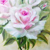 Vinage white pink roses. — Stock Photo