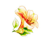 Spring flowers Watercolor painting. — Stock Photo