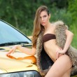 Sexy lady in bikini near golden car. — Stock Photo #52547537