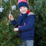 Buying christmas tree — Stock Photo #59411603