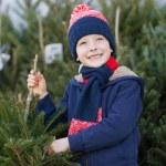 Buying christmas tree — Stock Photo #59411651