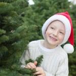 Buying christmas tree — Stock Photo #59411725