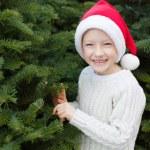 Buying christmas tree — Stock Photo #59411805