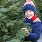 Buying christmas tree — Stock Photo #59411937