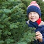 Buying christmas tree — Stock Photo #59412007