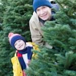 Christmas tree shopping — Stock Photo #71535955