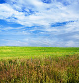 Céu e campos — Fotografia Stock