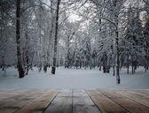 Frozen woods and wooden floor — Stock Photo