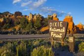 Entry into the National Forest and Red Canyon — Stock Photo