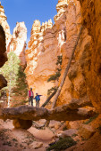 Family Travel in National Park — Stock Photo