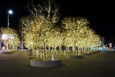Trees decorated with lights — Zdjęcie stockowe