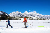 Family Cross-country skiing in  Wyomin — Stock Photo