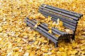秋天的公园长椅 — 图库照片
