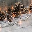 Christmas lights with pine cones — Stock Photo #57712765