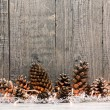 Christmas decoration with lights and pine cone — Stock fotografie #57713179