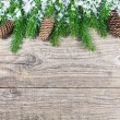 Christmas fir tree on rustic wooden board — Stock Photo #57886971