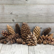 Christmas vintage decoration with pine cones — Stock Photo #59722639