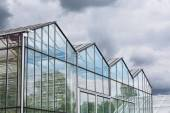 Greenhouse against dark cloudy sky — Stock Photo