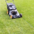 Lawn mover on green lawn — Stock Photo #74585709