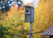 Oude birdhouse — Stockfoto