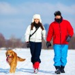 Walking with dog — Stock Photo #59724683