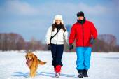 Walking with dog — Stock Photo