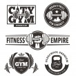 Fitness Emblems Set — Stock Vector #68221993