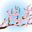 Oriental style painting, cherry blossom in spring — Vector de stock  #69248883