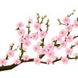 Oriental style painting, cherry blossom in spring — Vector de stock  #69746065