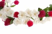 Wreath white flowers cherry and red raspberry  — ストック写真