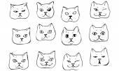 Vector sketch beautiful cat muzzle — Stock Vector